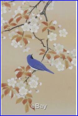 HANGING SCROLL JAPANESE PAINTING JAPAN Cherry blossom Bird Old Art VINTAGE 133p