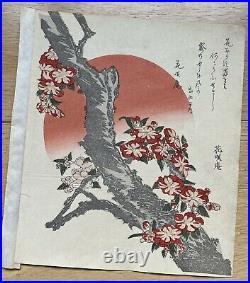 HOKUSAI A SURIMONO OF CHERRY BLOSSOM. 1800s Japanese Woodblock Print ukiyo-e