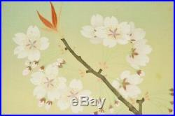 JAPANESE HANGING SCROLL 52.2 Painting Cherry Bird AGED ART Antique Japan b920