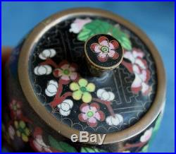 Vintage Chinese Cloisonne Enamel Japanese Cherry Blossom Tea Caddy Jar Box