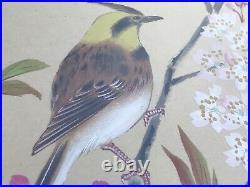 Vintage JAPANESE BIRD Sitting on CHERRY BLOSSOM TREE Watercolor PAINTING SILK