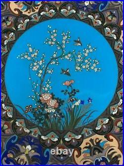 Vintage Japanese Cloisonne Plate Meiji Periode 14 Cherry Tree in Bloom Motifs